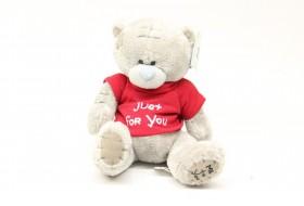 Teddy Bear Me to You no.2