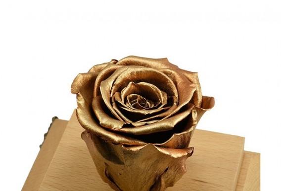 Eternal Golden Rose No.1